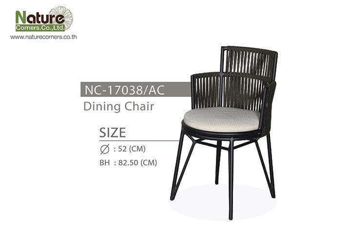 NC-17038/AC