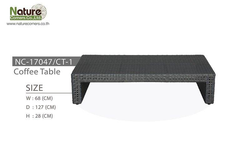 NC-17047/CT-1