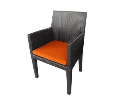 เฟอร์นิเจอร์หวายเทียม Dining Chair TF0031DC