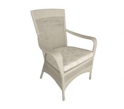 เฟอร์นิเจอร์หวายเทียม Dining Chair TF0708DC
