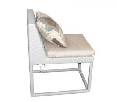 เฟอร์นิเจอร์หวายเทียม\Dining Chair\TF0919DC