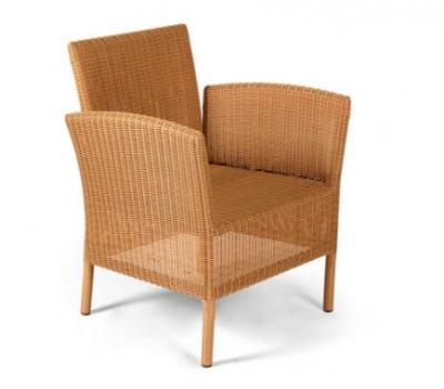 เฟอร์นิเจอร์หวายเทียม\Dining Chair\TF0975DC