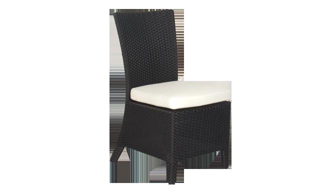 เฟอร์นิเจอร์หวายเทียม\Dining Chair\TF1002SC