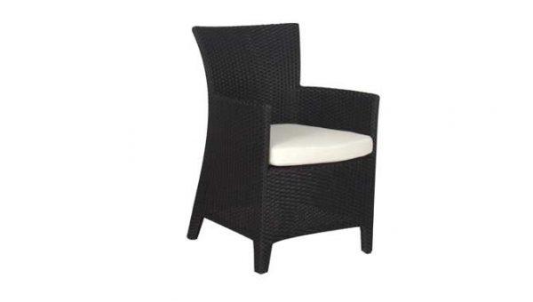 เฟอร์นิเจอร์หวายเทียม\Dining Chair\TF1002DC
