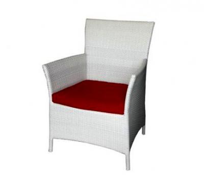 เฟอร์นิเจอร์หวายเทียม\Dining Chair\TF1050DCN
