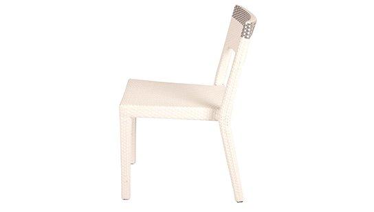 เฟอร์นิเจอร์หวายเทียม\Dining Chair\TF1102-SC-AL