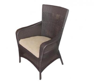 เฟอร์นิเจอร์หวายเทียม\Dining Chair\TF1110-006DC-1