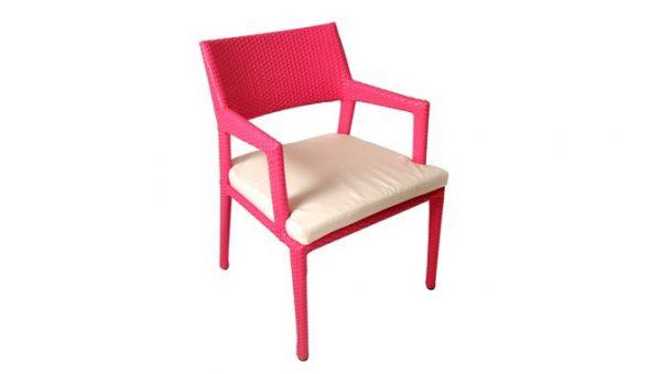 เฟอร์นิเจอร์หวายเทียม\Dining Chair\TF1145DC-1
